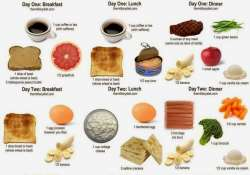 military diet weight loss myth calorie