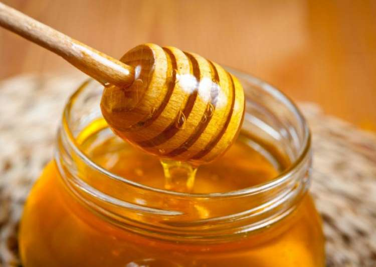 Honey best cure to treat oral cancer wounds, claim IIT- India Tv
