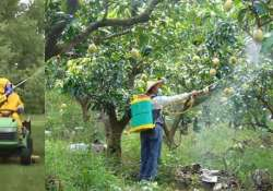 in india 6 000 tonnes of pesticides are used to save 108