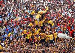 2 dozen dahi handi fests cancelled after bombay hc issues
