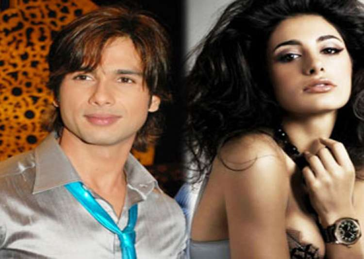 shahid nargis to play lead pair in siddharth s film- India Tv