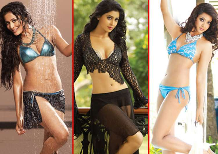 watch the hot calender girls of ccl 2013- India Tv