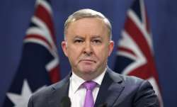 Anthony Albanese, a veteran politician, was elected