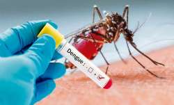Death toll in Bangladesh dengue outbreak hits 40