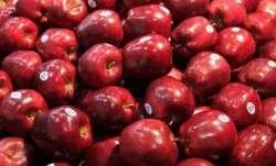 Tribal farmer harvests maiden apple crop