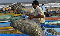 Kisan credit cards given to 8,400 fishermen so far: Government (Representational image)