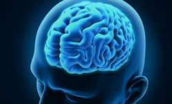 Brain related genetic disorder may be reversed using gene