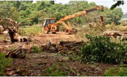 Cases against Aarey protesters to be dropped in a month: Maharashtra minister
