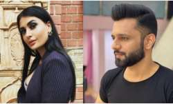 Bigg Boss 14 Oct 23 Episode Live Updates: Pavitra locks horns with Rahul, Navratri celebrations begi