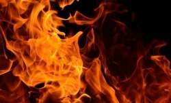 Fire breaks out at Eco Retreat facility in Odisha