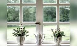 Vastu Tips: Having window, balcony in your flat in this direction is auspicious