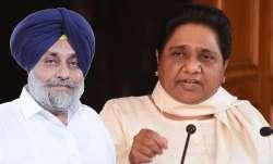 SAD-BSP alliance, Akali Dal BSP alliance, punjab news, punjab assembly election, punjab polls