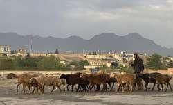 afghan rocket attack,