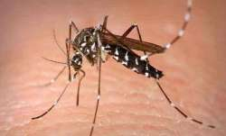 Zika Virus: Confirmed cases in Kerala rise to 48
