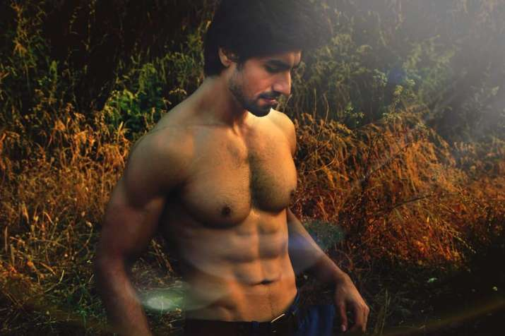 Harshad Chopda Birthday Instagram Videos